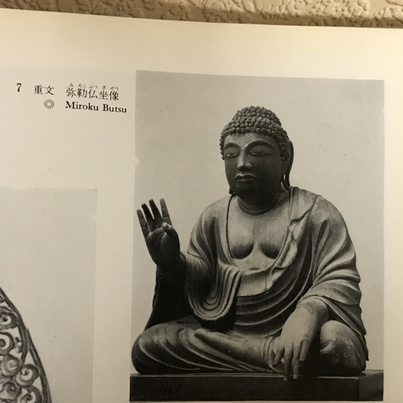 maitreya alternate angle